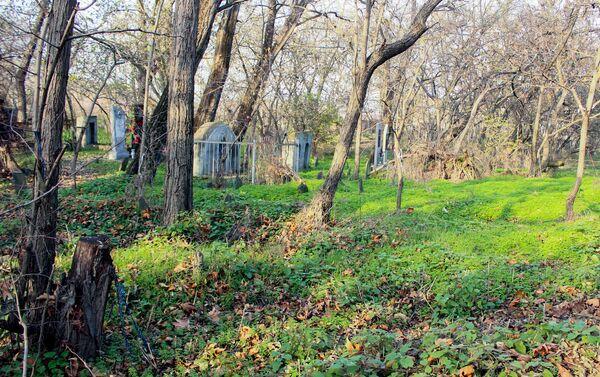 Святилище Баратма-пири в селе Джума Шекинского района - Sputnik Азербайджан