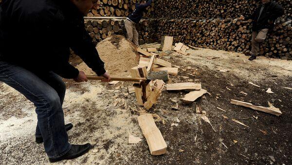 Заготовка дров, фото из архива - Sputnik Азербайджан