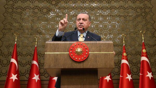 Türkiyə prezidenti Rəcəb Tayyib Ərdoğan prezident iqamətgahında keçirilən toplantı zamanı, 24 yanvar 2018-ci il - Sputnik Azərbaycan