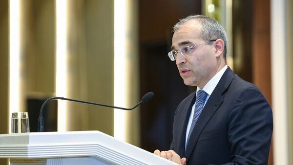 Министр налогов АР Микаил Джаббаров - Sputnik Азербайджан