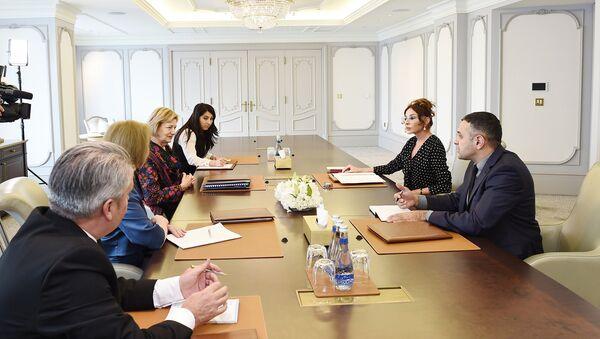 Встреча первого вице-президента Азербайджана Мехрибан Алиевой с торговым посланником премьер-министра Великобритании баронессой Эммой Николсон - Sputnik Азербайджан