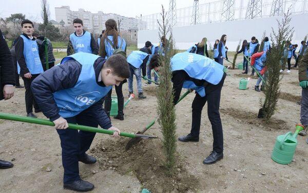 Акция по посадке деревьев, приуроченная к 26-й годовщине Ходжалинского геноцида - Sputnik Азербайджан