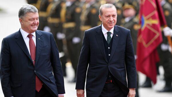 Эрдоган и Порошенко - Sputnik Азербайджан
