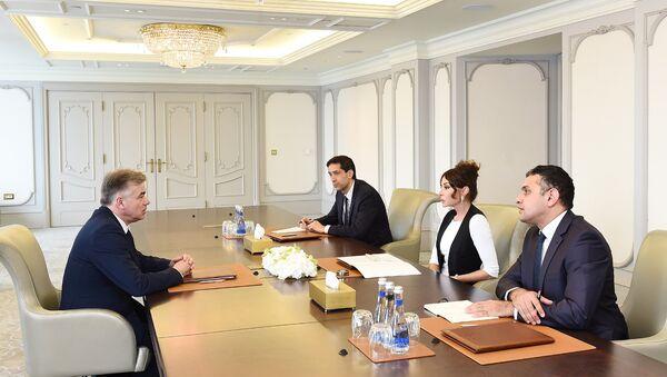 Первый вице-президент Азербайджана Мехрибан Алиева в ходе встречи с председателем группы дружбы Франция-Кавказ Сената Франции, сенатором Аленом Юпером - Sputnik Азербайджан