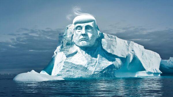 Trampın buzdan heykəli - Sputnik Azərbaycan