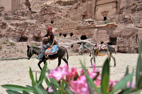 Бедуин с ездовыми осликами в древнем городе Петра в Иордании - Sputnik Азербайджан