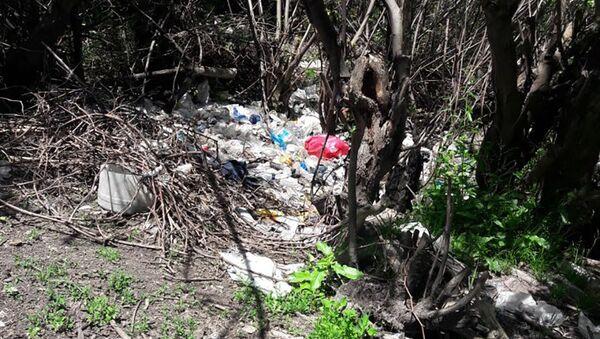 На территории муниципалитета Синджан Огузского района неправильно утилизируют бытовые отходы - Sputnik Азербайджан
