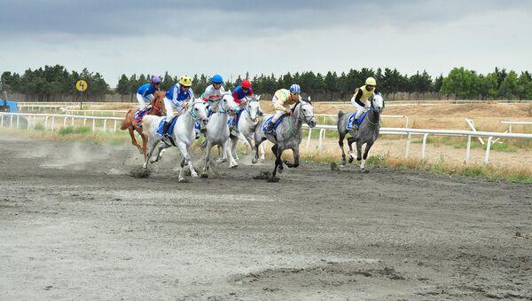 Milli Atçılıq Festivalının açılışı  - Sputnik Азербайджан
