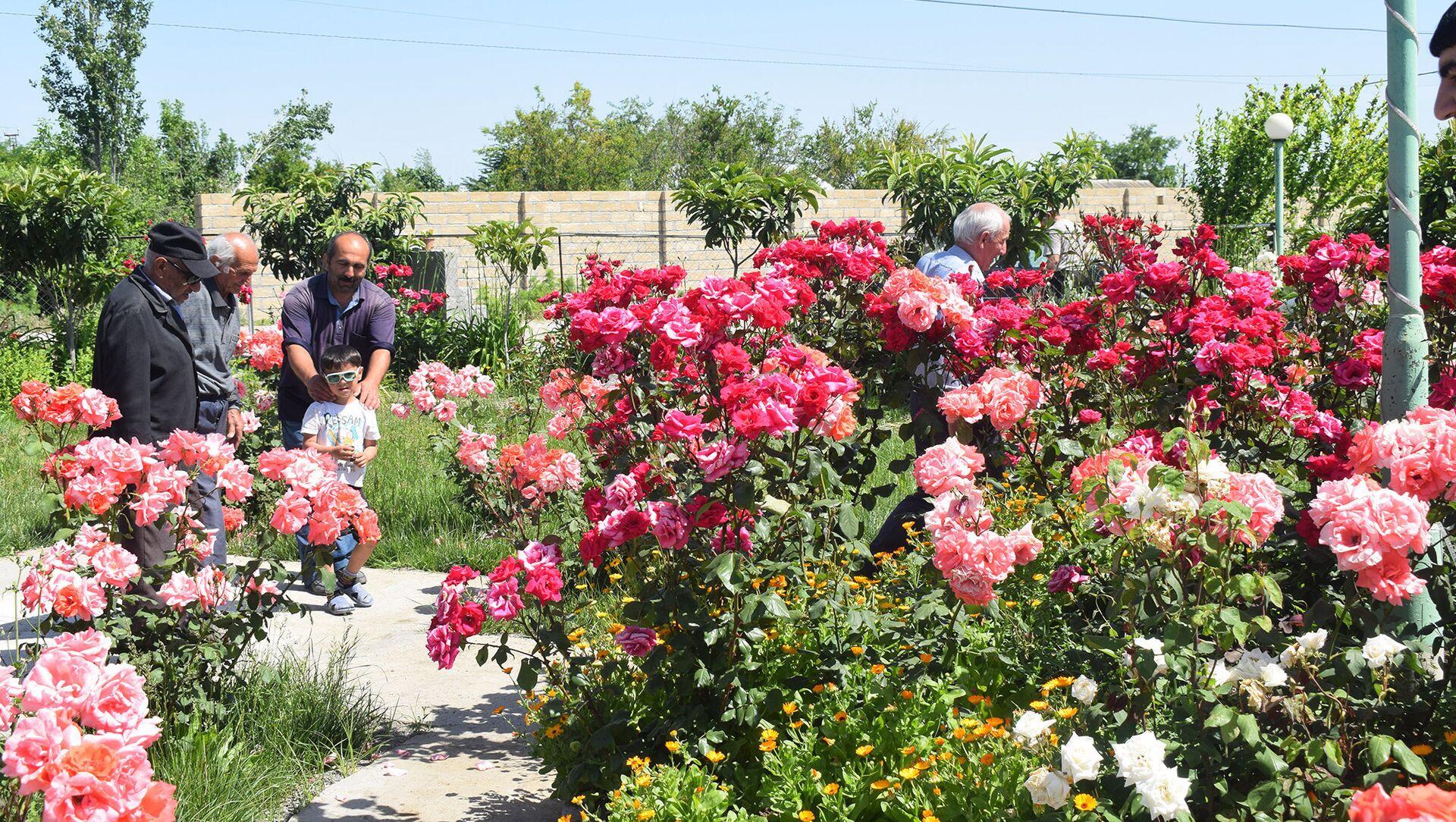 Два года назад Гошгар посадил тут четыре цветочных куста, сегодня в саду растет уже восемь тысяч кустов, десятки видов цветов - Sputnik Азербайджан, 1920, 17.04.2021