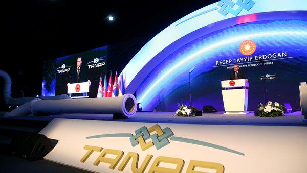 Выступление президента Турции Реджепа Тайипа Эрдогана на церемонии открытия газопровода TANAP - Sputnik Азербайджан