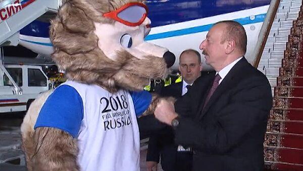 Ильхам Алиев и волк Забивака сыграли в футбол в аэропорту Москвы - Sputnik Азербайджан
