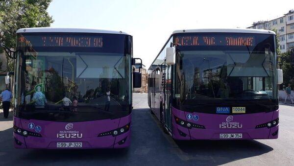 Новые автобусы, которые будут следовать по маршруту номер 85 - Sputnik Азербайджан