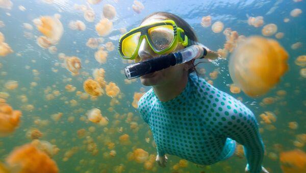 Подводное плавание в озере медуз на Палау - Sputnik Азербайджан