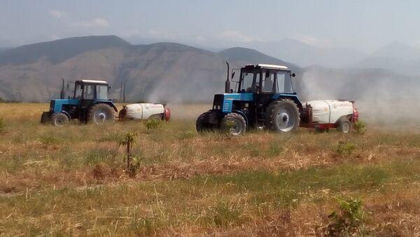 Трактора опрыскивают поля в ходе борьбы с саранчой в Шекинском районе - Sputnik Азербайджан