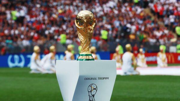 Кубок на поле перед началом финального матча чемпионата мира по футболу между сборными Хорватии и Франции - Sputnik Азербайджан