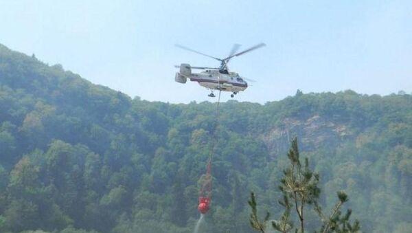 Şimal bölgəsində meşəlik ərazidə yanğınların yayılmasının qarşısı alınıb - Sputnik Azərbaycan