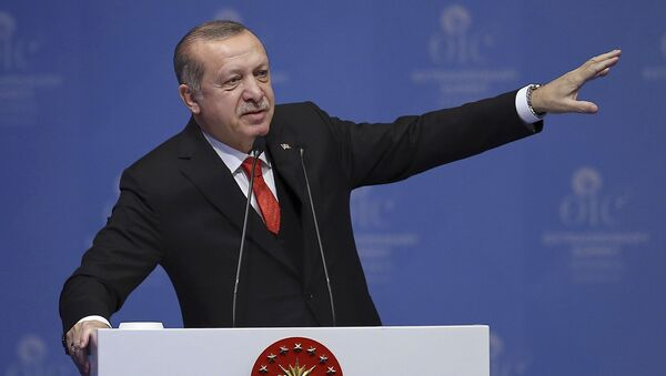 Президент Турции Реджеп Тайип Эрдоган, архивное фото - Sputnik Азербайджан