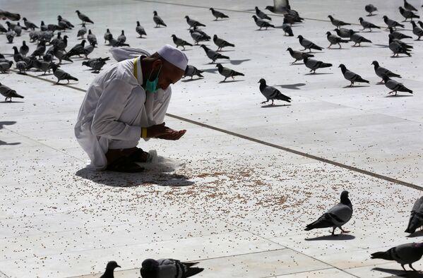 Мужчина кормит голубей у мечети аль-Харам в Мекке перед хаджем - Sputnik Азербайджан