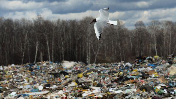 Полигон твердых бытовых отходов, фото из архива - Sputnik Азербайджан