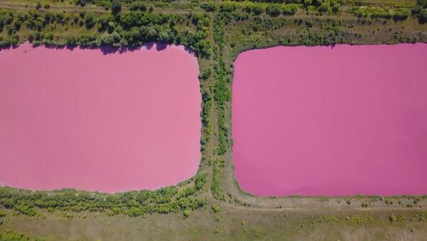 Розовые озера под Самарой - Sputnik Азербайджан