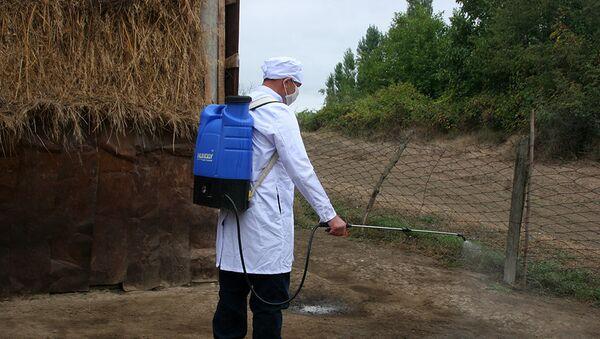 Специалист Государственной ветеринарной службы проводит дезинфекцию местности - Sputnik Азербайджан