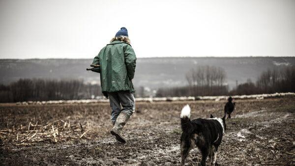 Пастух, фото из архива - Sputnik Азербайджан