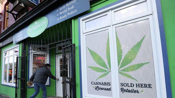 Продажа марихуаны в Канаде, фото из архива - Sputnik Азербайджан