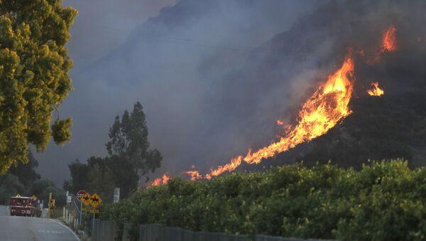 Огонь стелется по холму недалеко от Ньюбери-парка, Калифорния - Sputnik Азербайджан