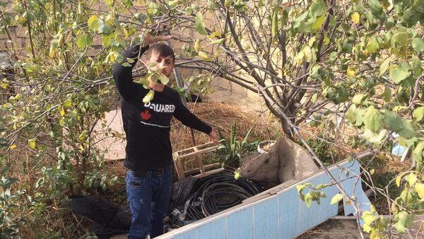 Задержанный Гейдаров Ниджат - Sputnik Азербайджан