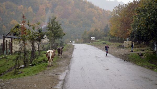 Село Осакюче в Лянкяране - Sputnik Азербайджан