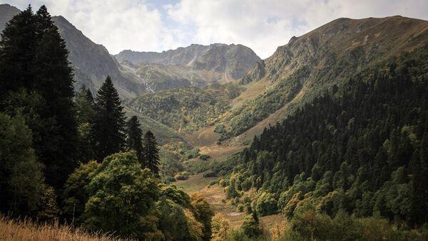 Кавказский государственный природный биосферный заповедник - Sputnik Азербайджан