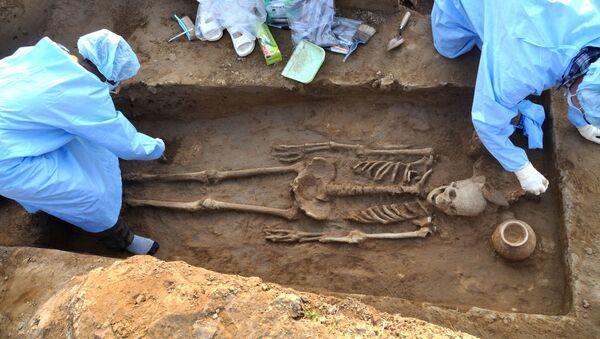 Члены археологической группы работают над одним из четырех человеческих скелетов, относящихся к 5000-летней эре Хараппа, которые были обнаружены на кургане в деревне Рахигархи - Sputnik Азербайджан
