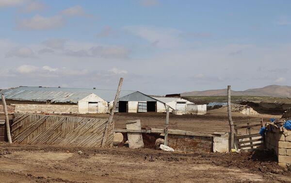 Абшеронский район, территория зимнего пастбища Хангулу - Sputnik Азербайджан