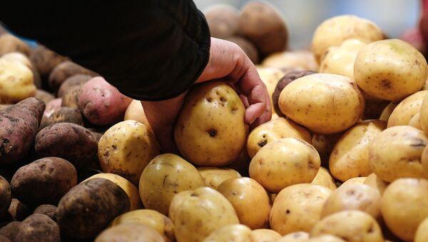 Овощной отдел в гипермаркете  - Sputnik Азербайджан