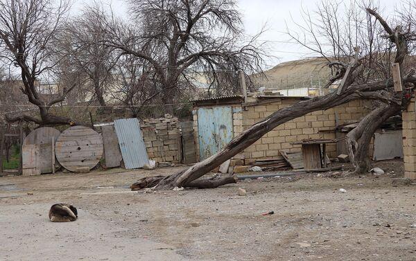 Двор общежития в поселке Гызылдаш - Sputnik Азербайджан