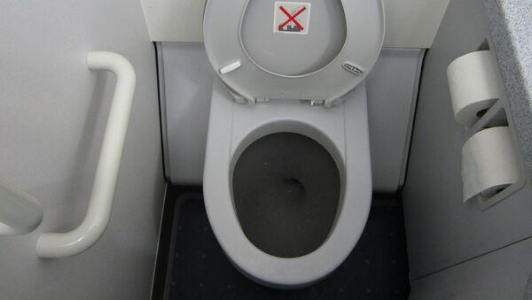 Самолетный туалет - Sputnik Азербайджан
