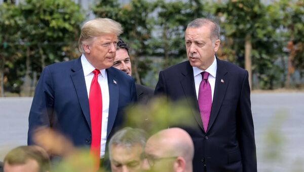Türkiyə Prezidenti Rəcəb Tayyib Ərdoğan ABŞ Prezidenti Donald Trampla - Sputnik Azərbaycan