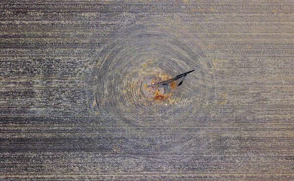 К западу от города Ганнеда в Новом Южном Уэльсе - Sputnik Азербайджан