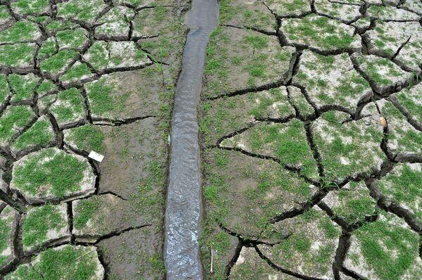 Иссохшая земля у водохранилища Лос-Лорелес в Тегусигальпе в апреле 2019 года - Sputnik Азербайджан