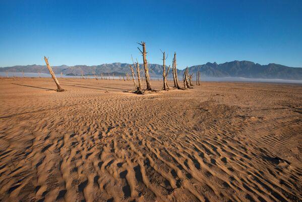 Четырехмиллионный Кейптаун остался без воды после трех засушливых зим, которые принес Эль-Ниньо - Sputnik Азербайджан