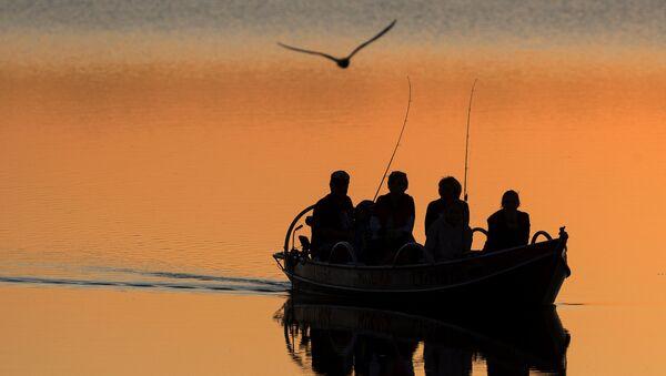 Местные рыбаки ловят рыбу на озере Лушяй недалеко от литовского города Игналина - Sputnik Азербайджан