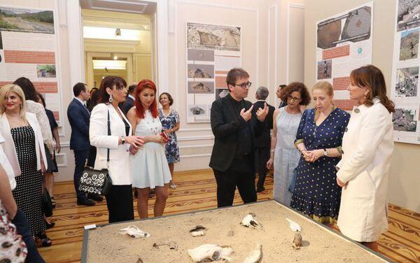 Выставка, посвященная десятилетию франко-азербайджанских археологических раскопок - Sputnik Азербайджан