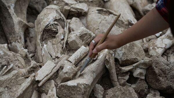 Археологический раскопки, фото из архива - Sputnik Азербайджан