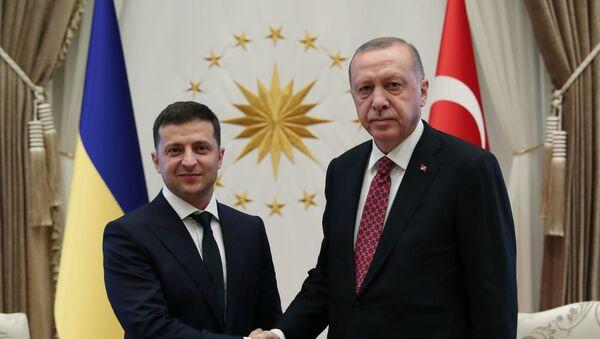 Президент Турции Реджеп Тайип Эрдоган и президент Украины Владимир Зеленский - Sputnik Азербайджан
