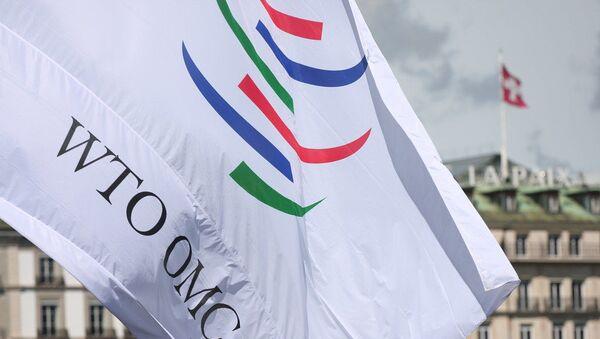 Флаг Всемирной торговой организации, фото из архива - Sputnik Азербайджан