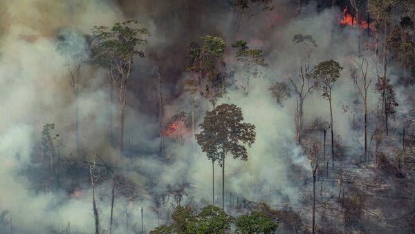 Лесные пожары в Бразилии  - Sputnik Азербайджан