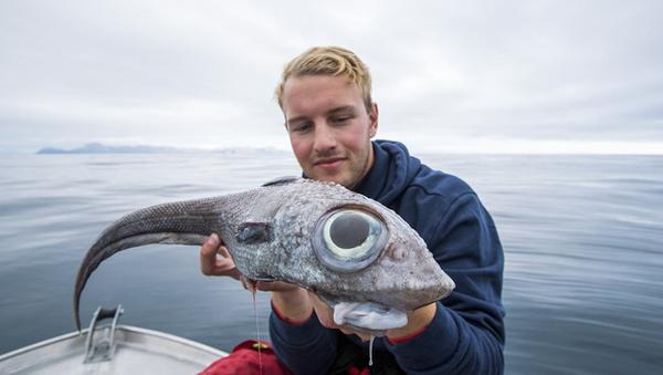 Оскар Ландал (Oscar Lundahl) поймал морскую крысу — рыбу с огромными выпуклыми глазами - Sputnik Азербайджан