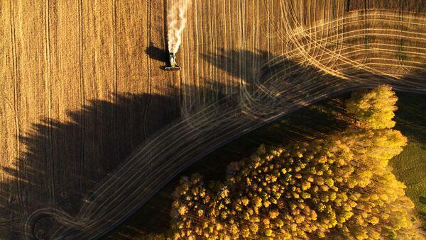 Уборка урожая зерновых в Новосибирской области - Sputnik Азербайджан