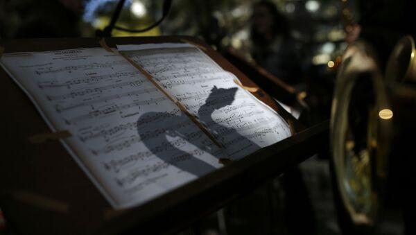 Тень саксофона на крафт бумаге, фото из архива - Sputnik Азербайджан
