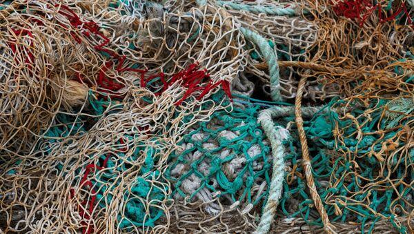 Рыболовные сети - Sputnik Азербайджан